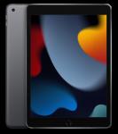 """iPad 10.2"""" 256Gb WiFi Space Gray (2021)"""