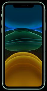 iPhone 11 DUOS 256Gb Green