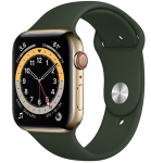 Watch 40mm Gold Stainless Steel Case with Cyprus Green Sport Band (M06V3/M02W3) Series 6 GPS + LTE